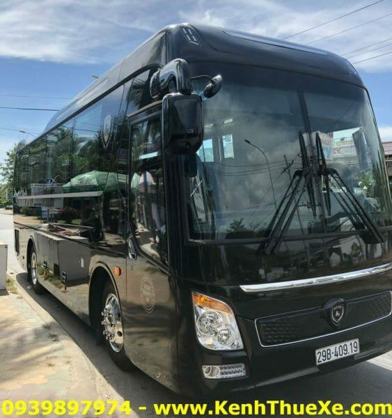 Thaco Limousine Dcar 19 Cho-3