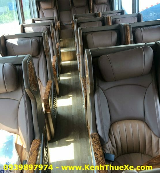 Thaco Limousine Dcar 19 Cho-4